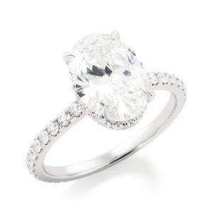 Revealed Secret Hidden Halo Engagement Ring